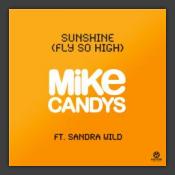Sunshine (Fly So High)