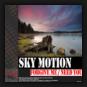Sky Motion - Need You