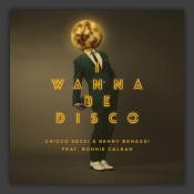 I Wanna Be Disco