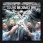 Partyraiser & Destructive Tendencies - Sound Becomes One