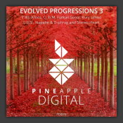 Evolved Progressions 3