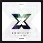 Modul8 & Faye - I Need Love