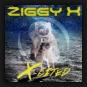 Ziggy X - X-Cited
