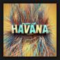Miami Ink - Havana