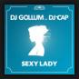 DJ Gollum feat. DJ Cap - Sexy Lady