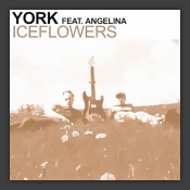 Iceflowers (Mind One vs Infra Edit)