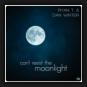 Ryan T. & Dan Winter - Can't Resist The Moonlight