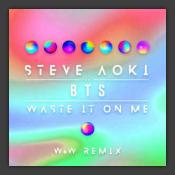 Waste It On Me (W&W Remix)