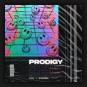 STVW & MountBlaq - Prodigy